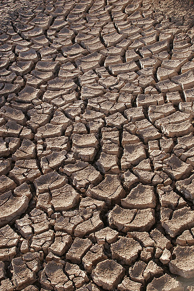 Drought Huge Drought Struck 16,000 Years Ago