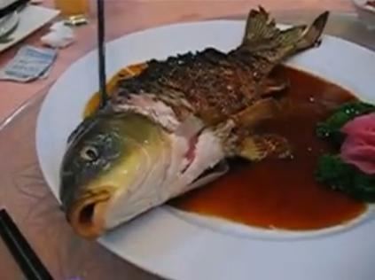 Ying Yang Fish 10 Bizarre Foods that Involve Eating Live Animals