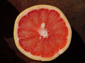 781481 grapefruit   pomelo 1 Grapefruit