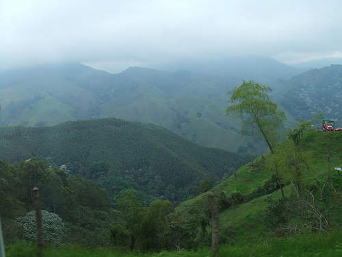 colombia 10 Most Endangered Forests on Earth